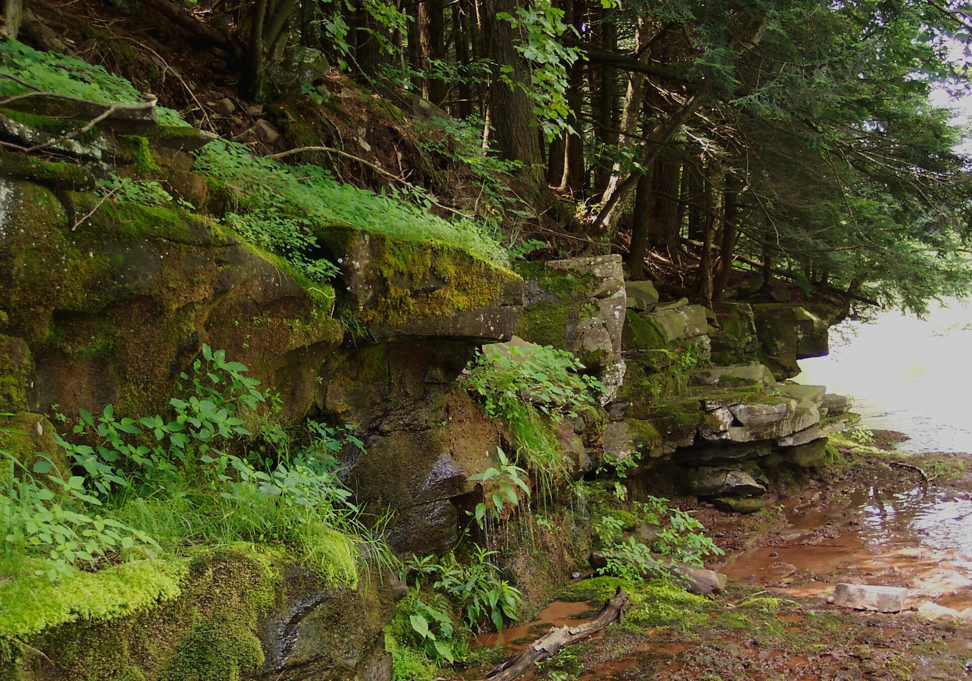 West Kill Creek